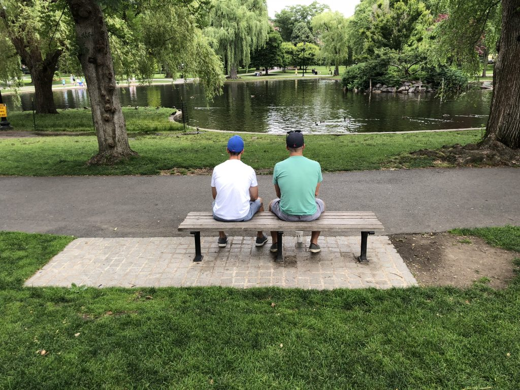 Good Will Hunting Bench at the Frog Pond