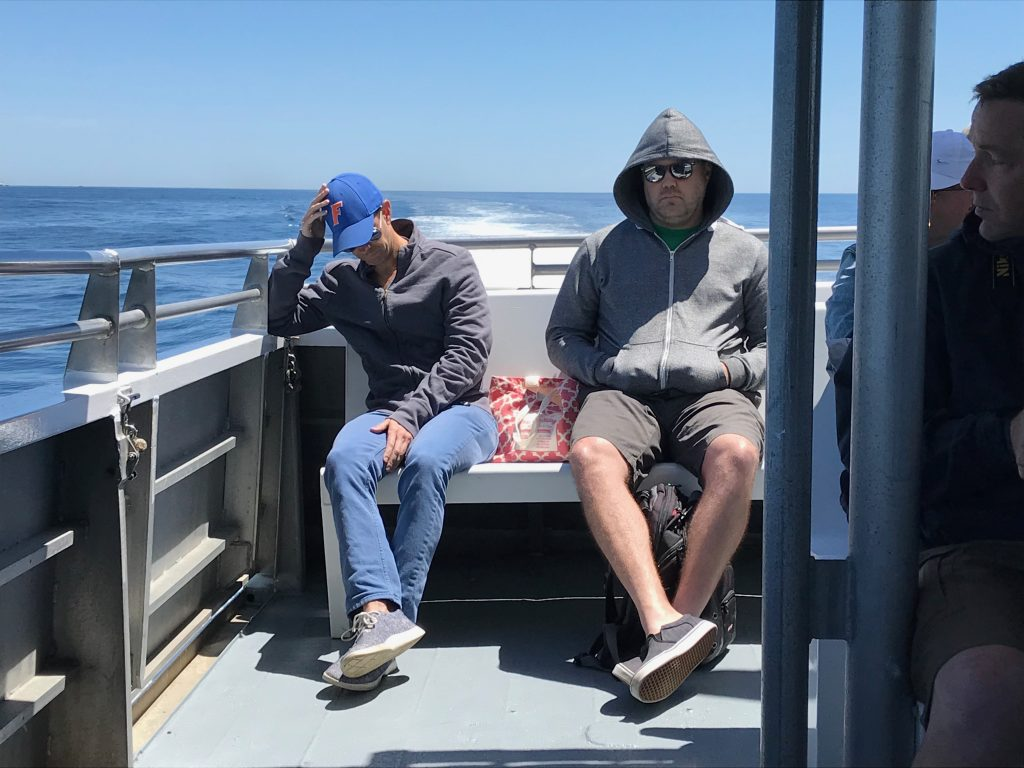 Seasick on a whale-watching boat